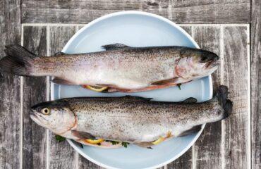 Fisk-kost-
