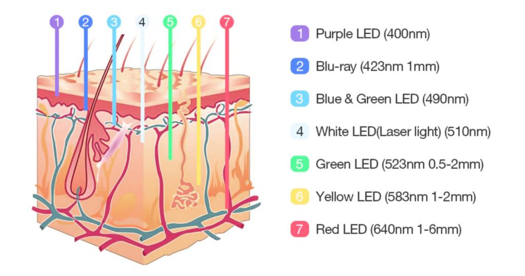 lysterapi-bølgelængder-7-lilla-blå-grøn-hvid-gul-rød