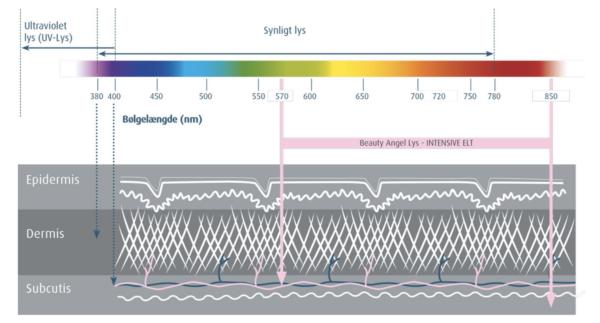 bølgelængder-gennemtrænger-dermis
